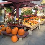 Fall In The Pocono Mountains – Pies, Pumpkins, Mums and More